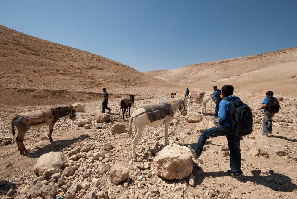 Ti invitiamo a scoprire il Librosolidale che sostiene Gaza